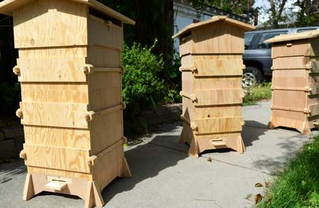 Open Source Beehives : Citizen Science tracking Bee decline.