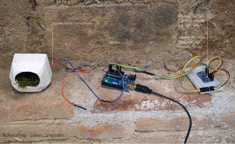 sensors (800x489)