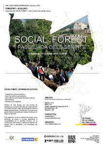 Social Forest 2015-01